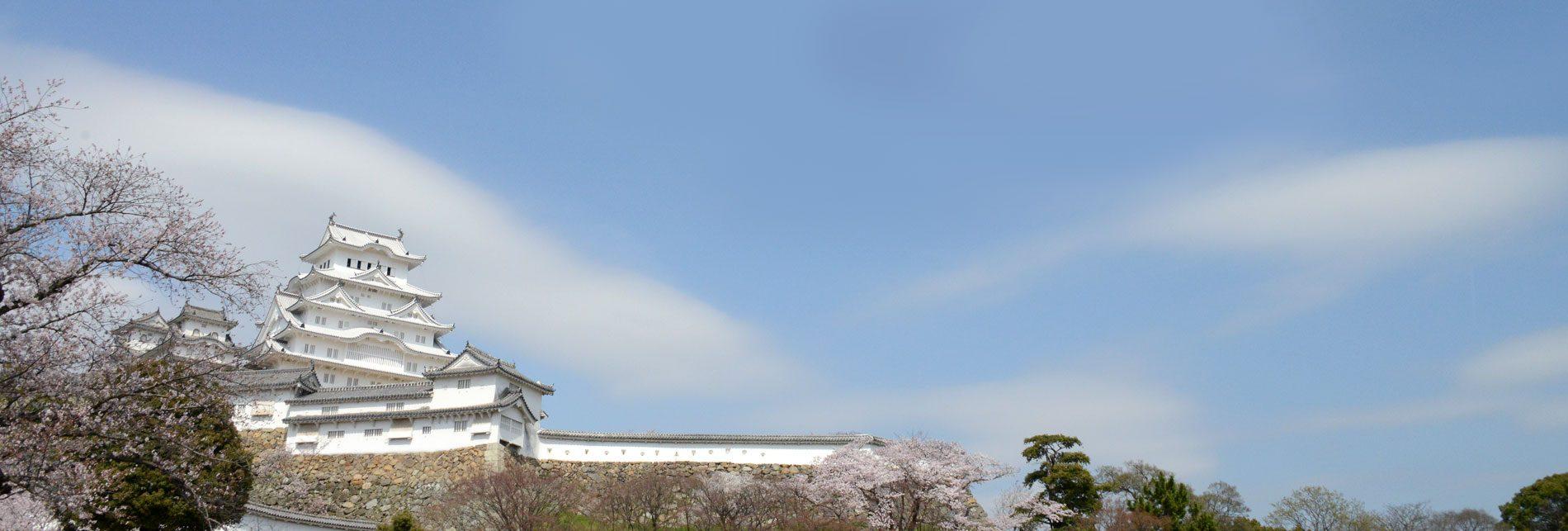 世界遺産姫路城に育まれた城下町、姫路。 <br> <br>当地で創業54年目(2017年)を迎えました 姫路の呉服 えり新 よりお届けいたします。
