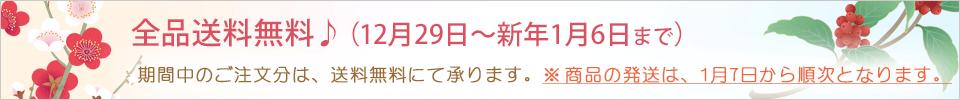 期間中全品送料無料♪(2020年12月29日~2021年1月6日まで)