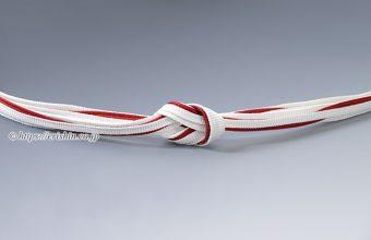 帯締め 遠州組(三枚縫い合わせ木の葉/白に紅)
