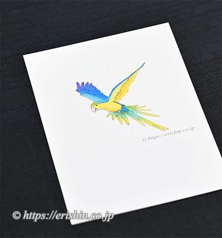 オリジナル洒落紋図案(飛翔する鸚哥)