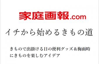 家庭画報.com「イチから始めるきもの道」第29回